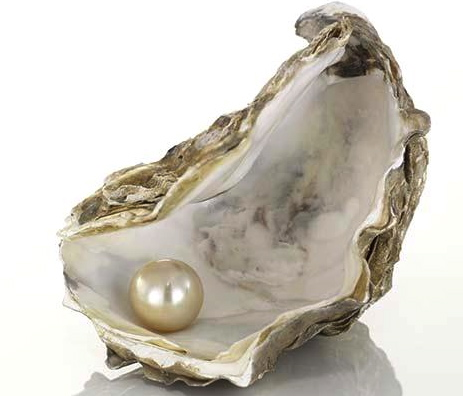 Circles Pearl For Dark Open Oyster Shell With Pearl
